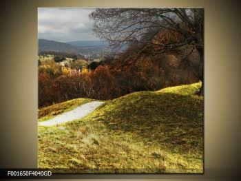 Obraz podzimního pahorku (F001650F4040GD)