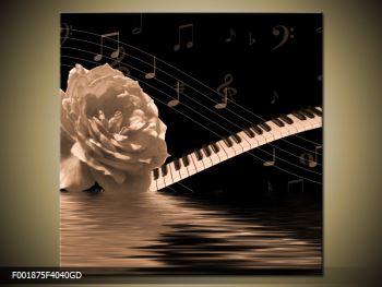 Černobílý obraz růže a klavíru (F001875F4040GD)