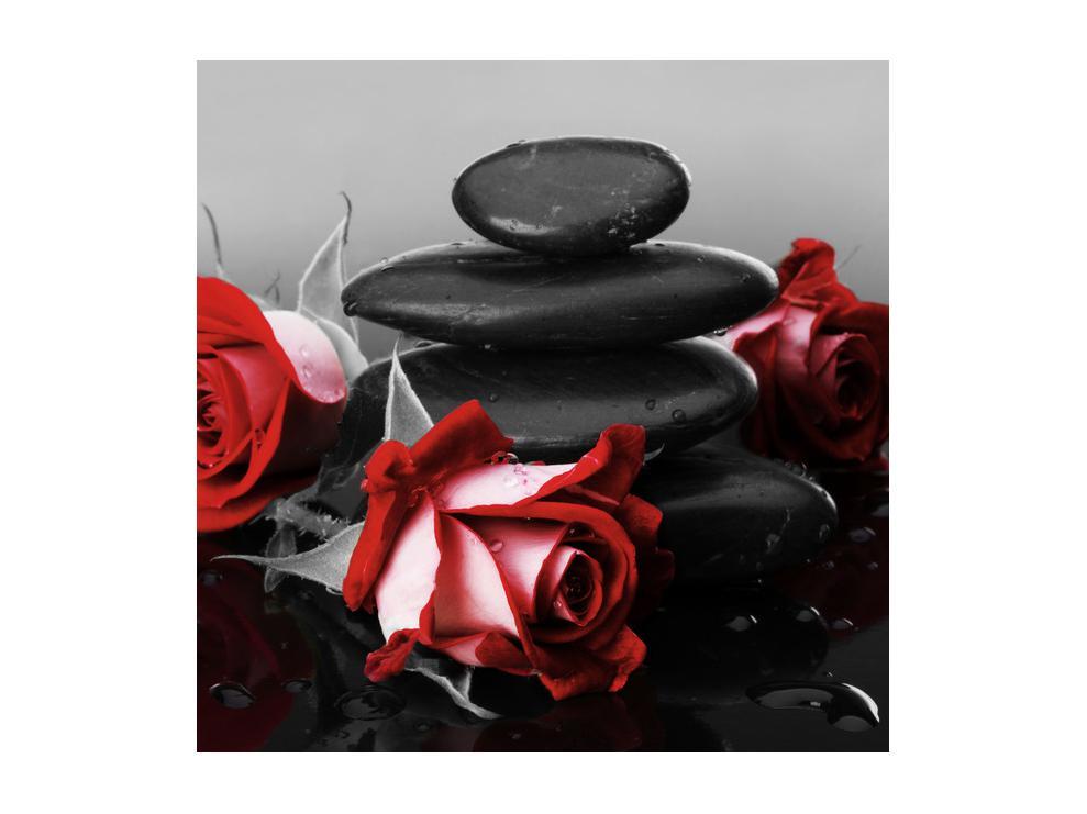 Obraz růže (K011705K5050)