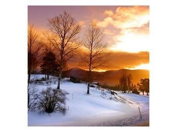 Obraz zimní krajiny (F000031F5050)