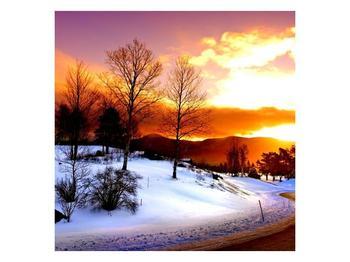 Obraz zimní krajiny (F000192F5050)