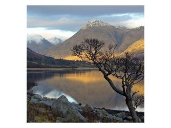Obraz hor u jezera (F000686F5050)