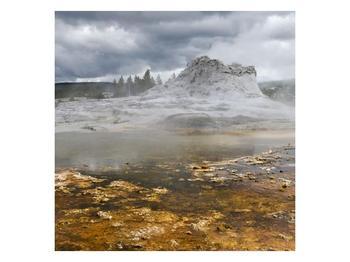 Obraz jev přírody (F001553F5050)