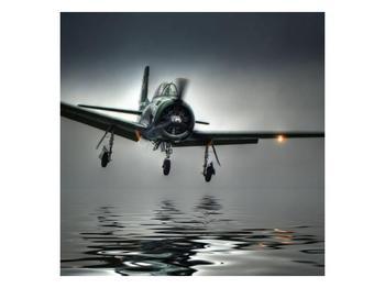 Obraz letadla  (F001593F5050)
