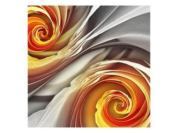 Abstraktní obraz - spirál (F001693F5050)