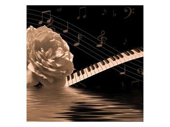 Černobílý obraz růže a klavíru (F001875F5050)