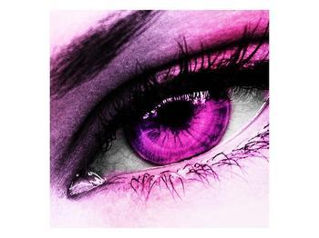 Obraz fialového oka (F002080F5050)