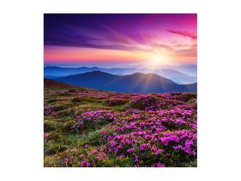 Tablou cu peisaj montan înflorit (K011322K5050)