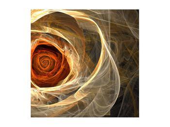 Moderní obraz růže (K011479K5050)