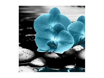Tablou cu flori de orhidee albastre (K012398K5050)