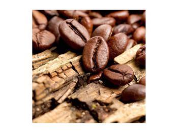 Obraz kávových zrn (K012413K5050)