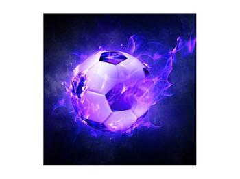 Tablou cu mingea de footbal în plasă (K014164K5050)