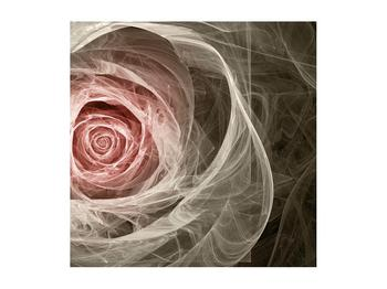 Abstraktní obraz růže (K014988K5050)