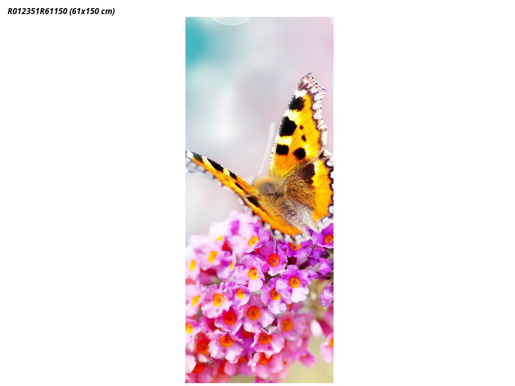 Fotoroleta R012351R61150 (R012351R61150)