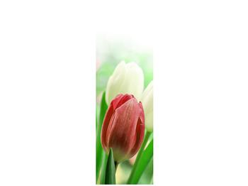 Fotoroleta R012181R68215 (R012181R68215)