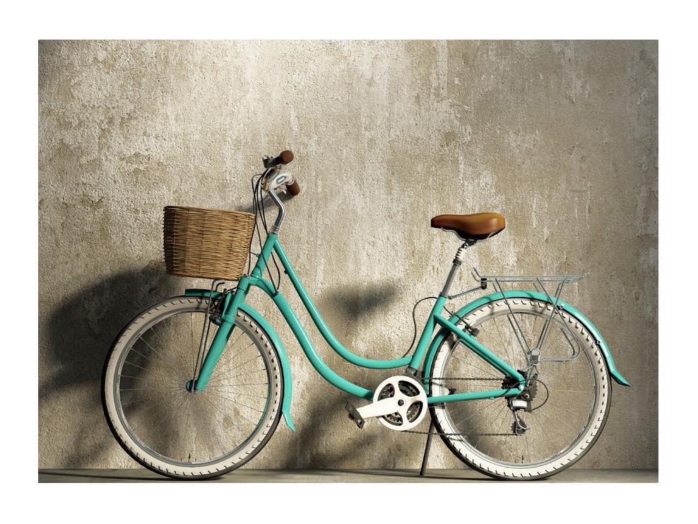 Slika bicikla (K011115K7050)