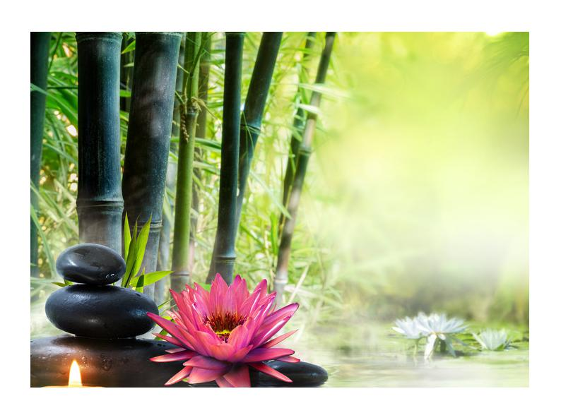 Slika lotosa, bambusa i svijeće (K012051K7050)