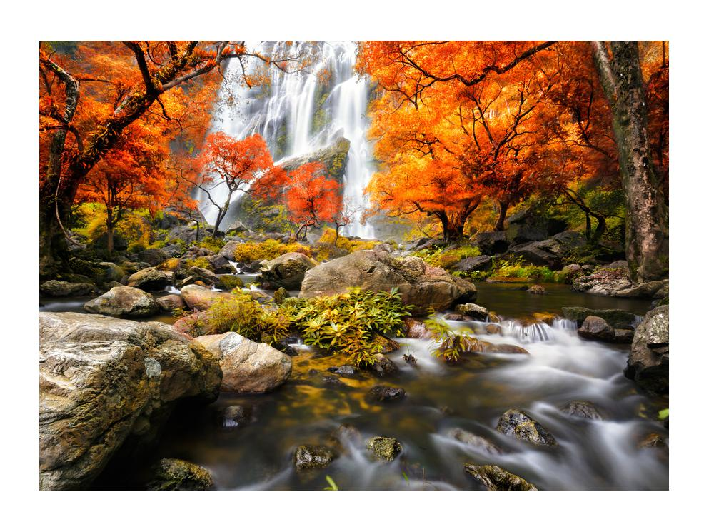 Slika jesenskog krajolika (K012335K7050)