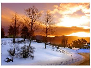 Obraz zimní krajiny (F000031F7050)