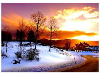 Obraz zimní krajiny (F000192F7050)