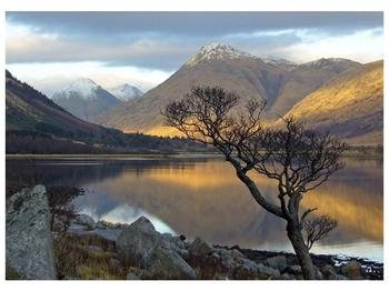 Obraz hor u jezera (F000686F7050)