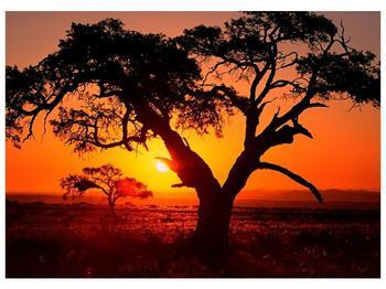Obraz ohnivého západu slunce (F001288F7050)
