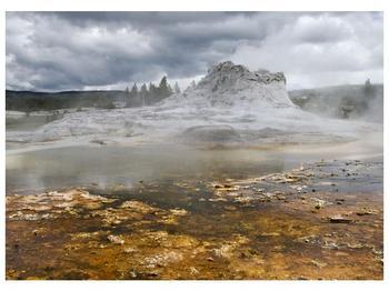 Obraz jev přírody (F001553F7050)