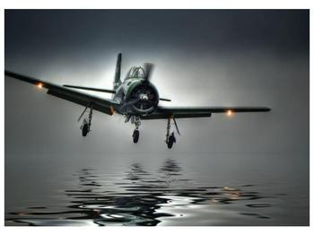 Obraz letadla  (F001593F7050)