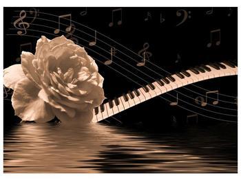 Černobílý obraz růže a klavíru (F001875F7050)