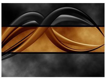 Dvoubarevný obraz chapadel (F002027F7050)