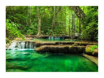 Obraz průzračného lesního toku (K011187K7050)