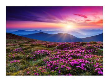 Tablou cu peisaj montan înflorit (K011322K7050)