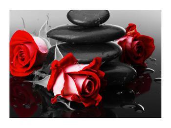 Obraz růže (K011400K7050)