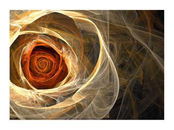 Moderní obraz růže (K011479K7050)