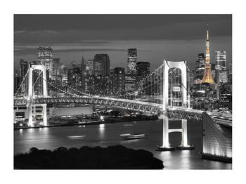 Obraz mostu (K011529K7050)