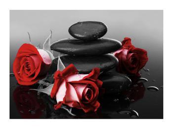 Obraz růže (K011705K7050)