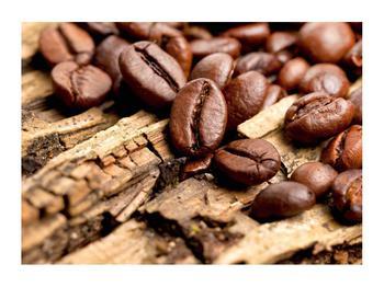 Obraz kávových zrn (K012413K7050)