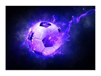 Tablou cu mingea de footbal în plasă (K014164K7050)