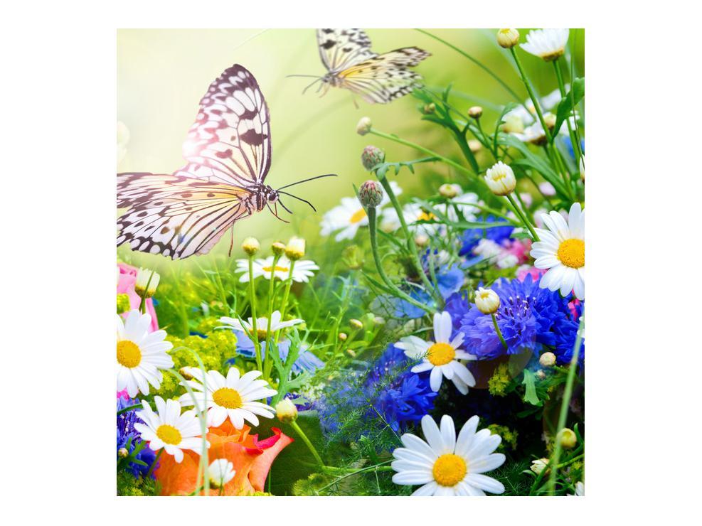 Slika poletnih cvetov z metuljem (K012220K7070)