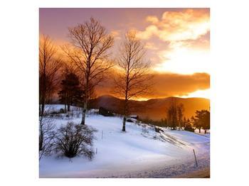 Obraz zimní krajiny (F000031F7070)
