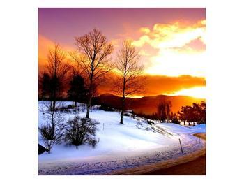 Obraz zimní krajiny (F000192F7070)