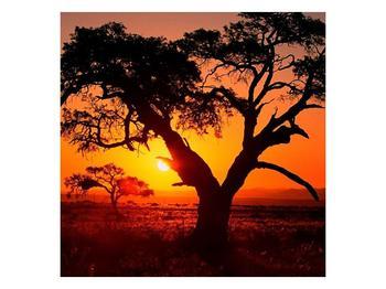 Obraz ohnivého západu slunce (F001288F7070)