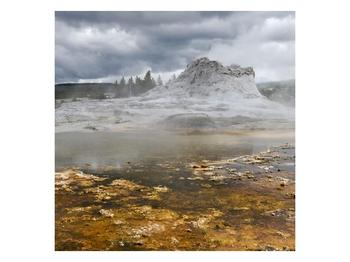 Obraz jev přírody (F001553F7070)