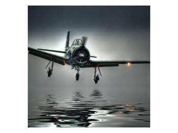 Obraz letadla  (F001593F7070)