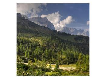 Krásný obraz hor (F001632F7070)