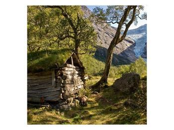 Obraz horské chatrče (F001636F7070)