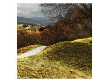 Obraz podzimního pahorku (F001650F7070)