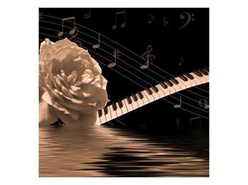Černobílý obraz růže a klavíru (F001875F7070)