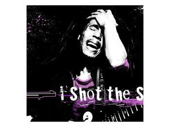 Obraz Bob Marley (F002162F7070)