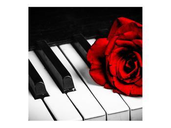 Zongora és egy rózsa képe (K011229K7070)